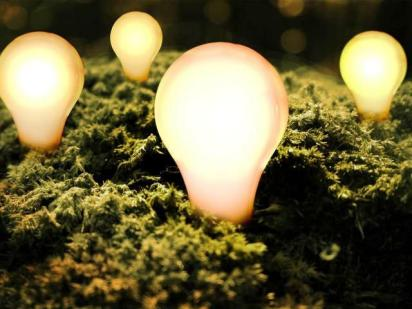Lightbulbs in grass