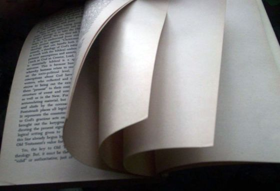 Book's last pages